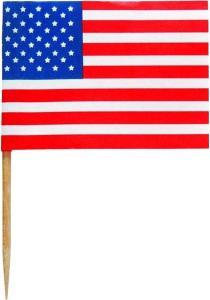 30 U.S. Flag Picks