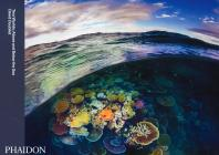 Two Worlds: Above And Below The Sea