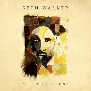 Seth Walker - Are You Open