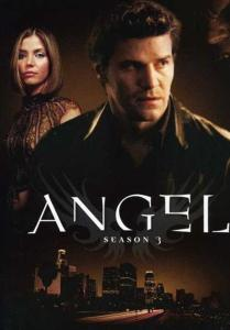 Angel: Season 3 [Edizione in lingua inglese]