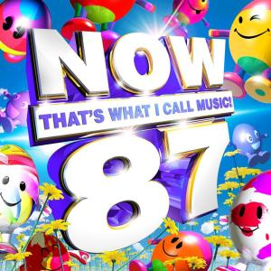 Now That's What I Call Music 87 (2 Cd)