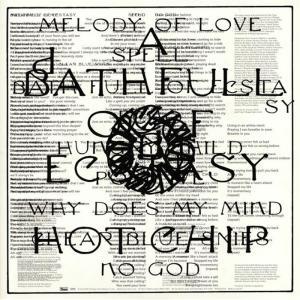 Hot Chip - A Bath Full Of Ecstasy (2 Lp)