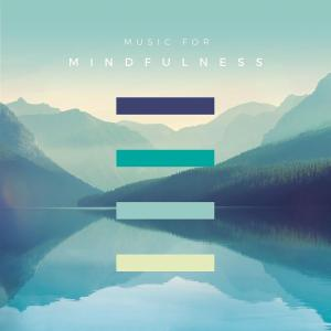 Music For Mindfulness / Various (3 Cd)