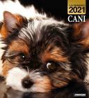 Cani. Calendario 2021