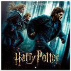 Harry Potter Calendario 2021 30x30 Cm