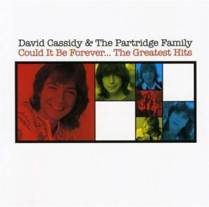 David Cassidy & The Partridge Family - Could It Be Forever The Greatest Hits (2 Cd)