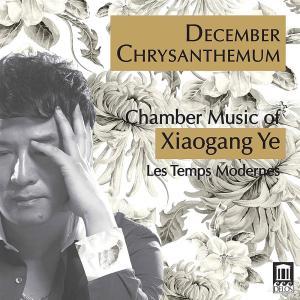 Xiaogang Ye - December Chrysanthemum