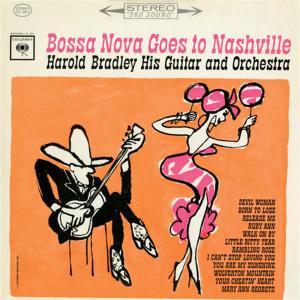 Harold Bradley - Bossa Nova Goes To Nashville